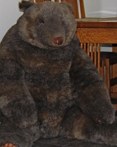 Mr Bear at home 2