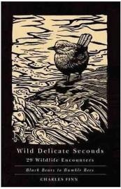 wild delicate seconds